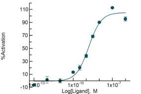 serotonin 5-HT1F cAMP agonist
